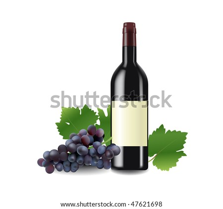 bottle of red wine and grape vector illustration