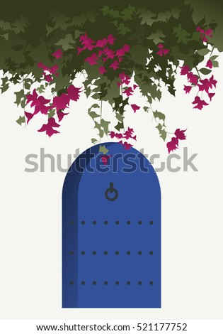 bougainvillea flowers and blue