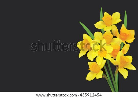 bouquet of daffodils on a...