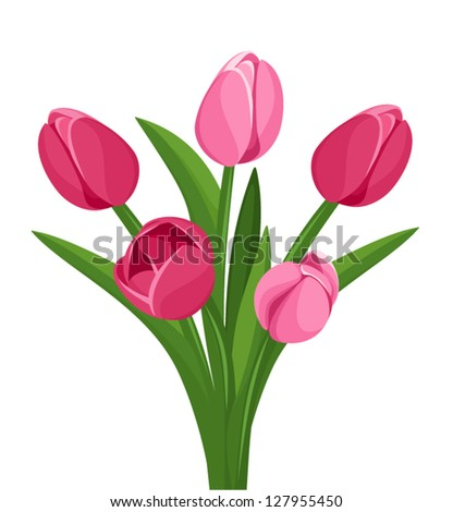 Bouquet of pink tulips. Vector illustration.