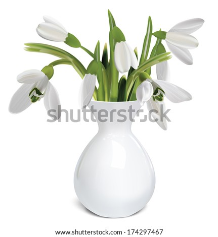 bouquet of snowdrops in a vase