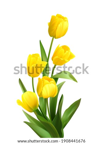 bouquet of spring yellow tulips