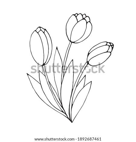 bouquet of three contour