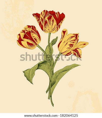 bouquet of three red and yellow