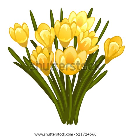 bouquet of yellow crocuses