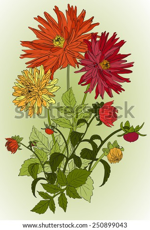 bouquets of Beautiful flowers of Garden asters