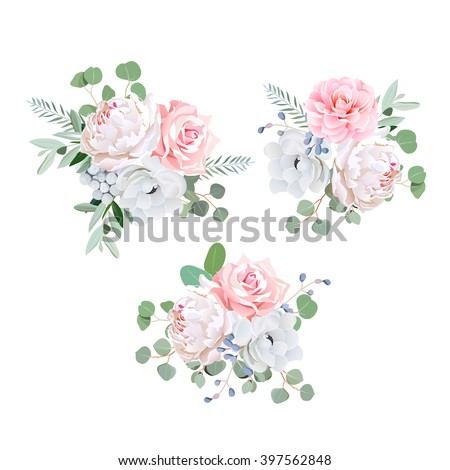 Bouquets of rose, peony, anemone, camellia, brunia flowers and eucalyptus leaves. Vector design elements.  #397562848