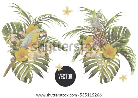 Bouquets with tropical flowers, palm leaves, jungle leaf, monstera, hibiscus, pineapple, parrot, exotic bird. Vector vintage botanical illustrations, floral elements isolated on white background