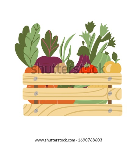 box with vegetables. Mesh eco bag full of vegetables isolated on white background. Modern shopper with fresh organic food from local market. Vector illustration in flat cartoon style.