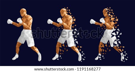 boxer abstract design  three
