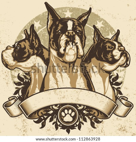 Boxer Crest Design. Vector illustration of three purebred boxer dogs (front view, profile view and 3/4 view) sitting proudly over a grunge banner and floral design elements.