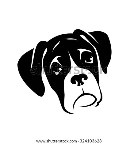 Boxer dog head drawing
