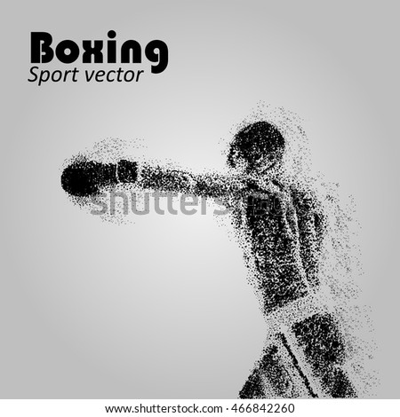 boxer from particles boxing