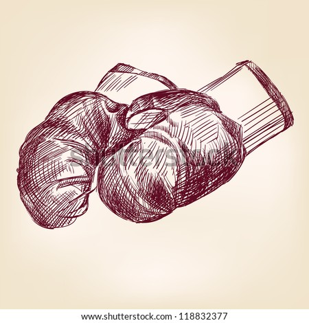 boxing gloves  hand drawn vintage  vector illustration