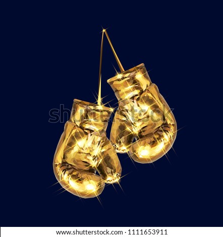 boxing gloves hanging golden