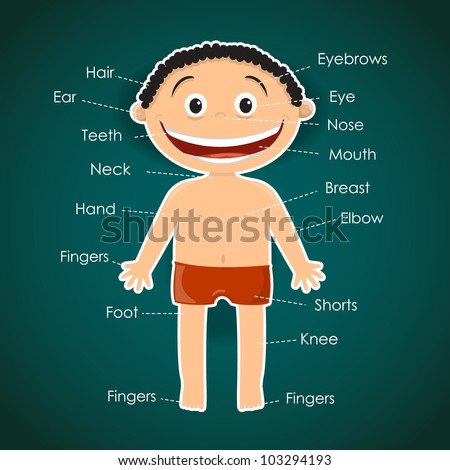 Boy. Parts of a body. Vector illustration