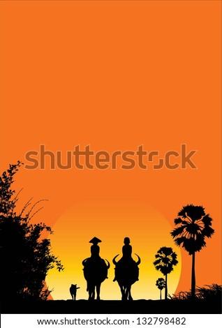 boys riding buffalo in south