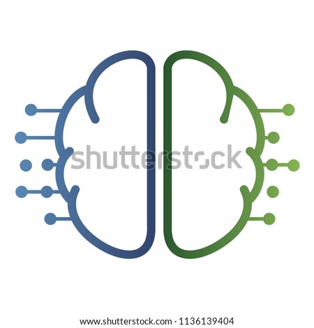 brain activity. cognitive system of the human brain