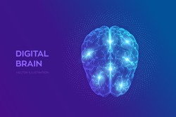 Brain. Digital brain with binary code. 3D Science and Technology concept. Neural network. IQ testing, artificial intelligence virtual emulation science technology. Vector illustration.
