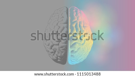 Brain engraving drawing illustration in top view with left and right functions concept on colorful and gray space background