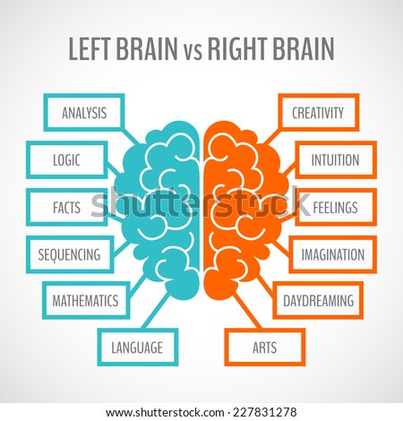 Brain left analytical and right creative hemispheres infographics set vector illustration