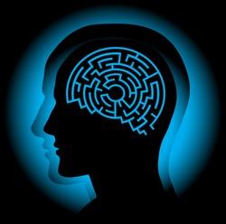 Brain maze..