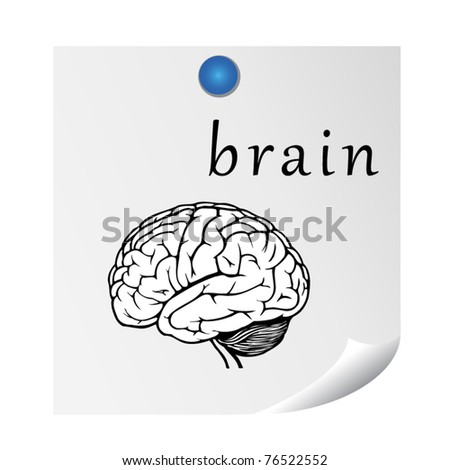brain on sticker. illustration for education. EPS10