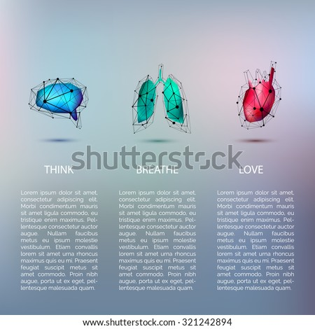 brain think lungs breathe heart