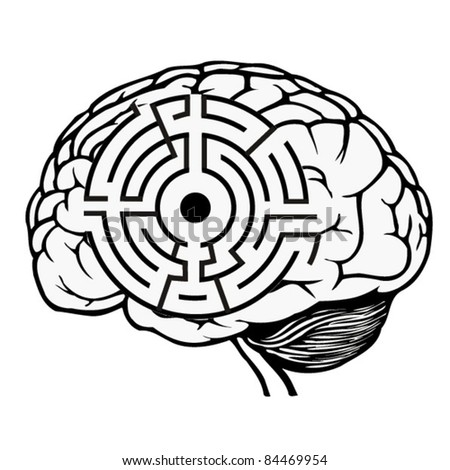 brain with labyrinth model. maze vector illustration