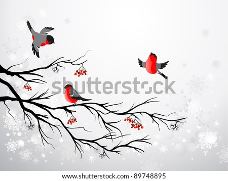 branch and birds bullfinch with