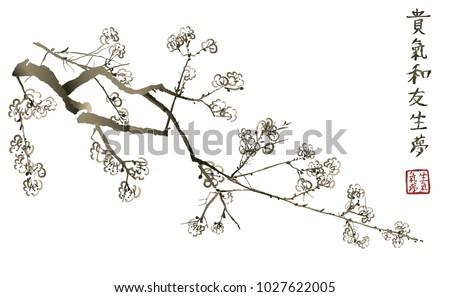 branch of blossoming sakura