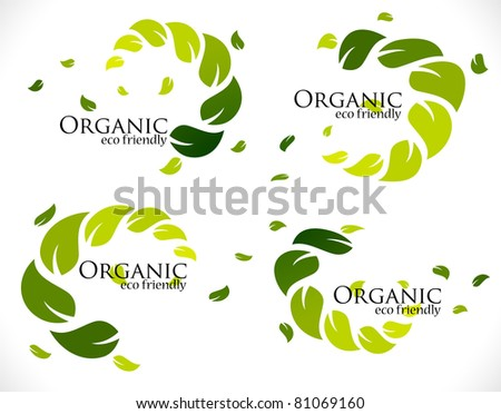 branch of fresh organic green leaf