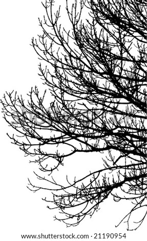 tree silhouette vector. of tree silhouette vector