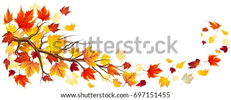 Branch With Orange Leaves In Falling
