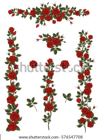 branches climbing scarlet rose