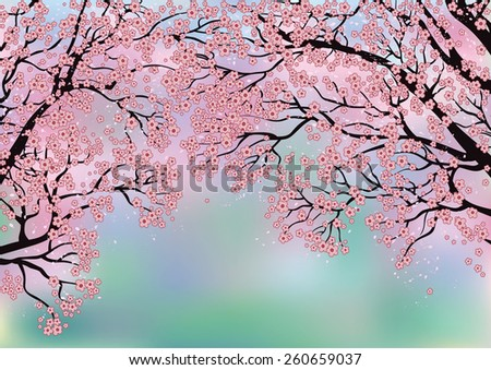 branches of blossoming trees on