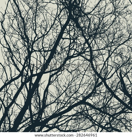 branches silhouette detailed