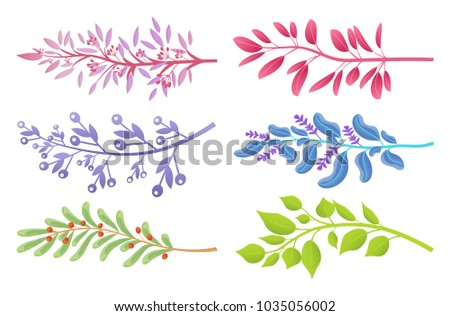 branches with colorful leaves
