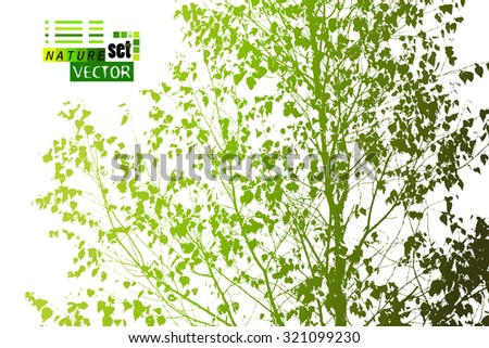 branches with leaves trace