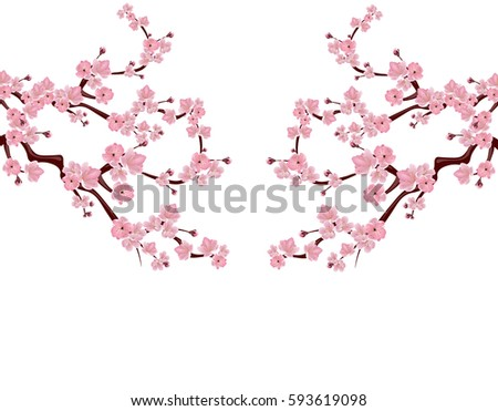branches with pink flowers and