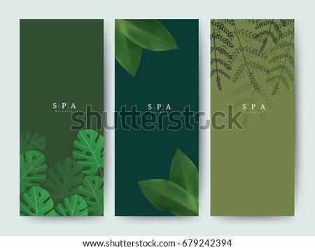 branding packaging palm