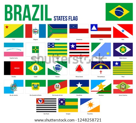 Brazil All States Flags Vector Illustration in Official Colors And Proportion. Brazil States Flag Collection.