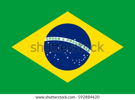 brazil flag  official colors