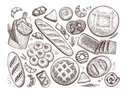 Bread, baked goods sketch. Bakery, bakeshop, food concept. Vintage vector illustration