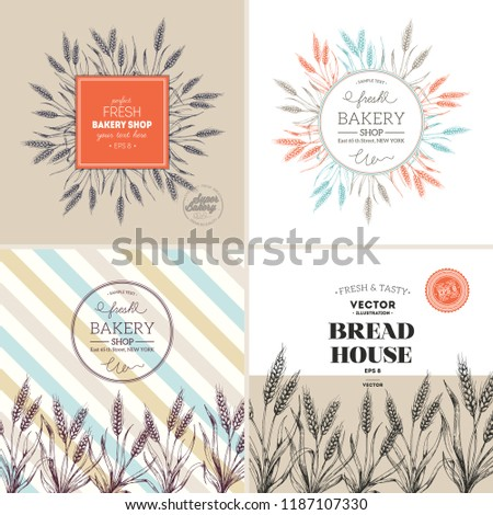 Bread design template collection. Wheat stalk vintage illustration. Vector illustration