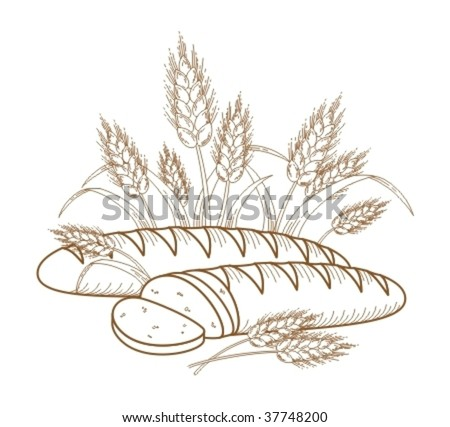 Bread. Illustration of ripe ears and bread for your designs. - stock vector