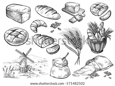 Bread vector hand drawn set illustration in graphic style