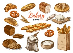Bread vector hand drawn set illustration in graphic style. Other types of wheat, flour fresh bread. Color vector hand drawn vintage engraving illustration for poster, label and menu bakery shop