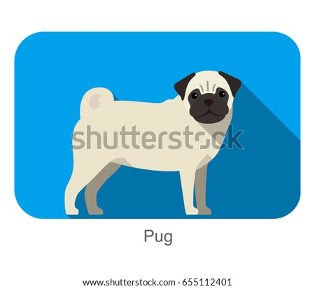 breed dog standing on the