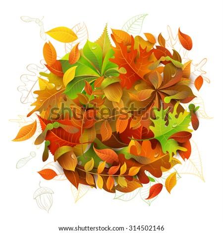 bright autumn background....